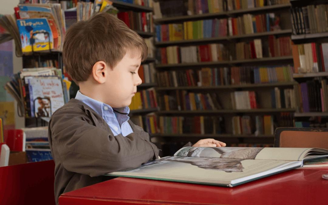 Children's Working Memory